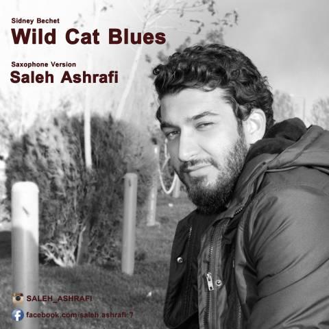 دانلود آهنگ صالح اشرفی به نام Wild Cat Blues