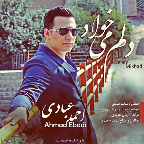 دانلود آهنگ احمد عبادی به نام دلم میخواد