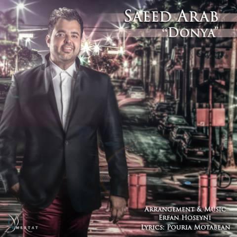 دانلود آهنگ سعید عرب به نام دنیا