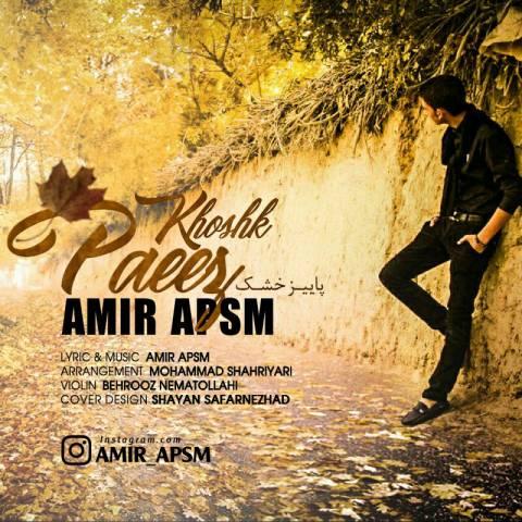 دانلود آهنگ امیر APSM به نام پاییز خشک