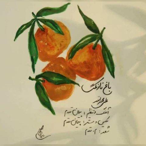 دانلود آهنگ علی مهران فر به نام باغ نارنگی