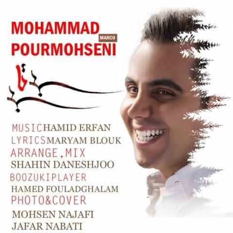 دانلود آهنگ محمد پورمحسنی به نام بیتابی