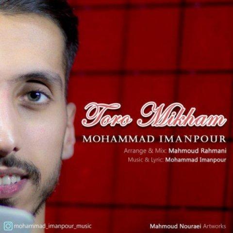 دانلود آهنگ محمد ایمانپور به نام تو رو میخوام