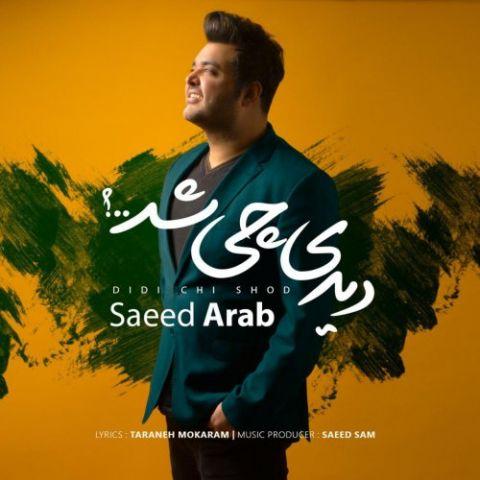 دانلود آهنگ سعید عرب به نام دیدی چی شد