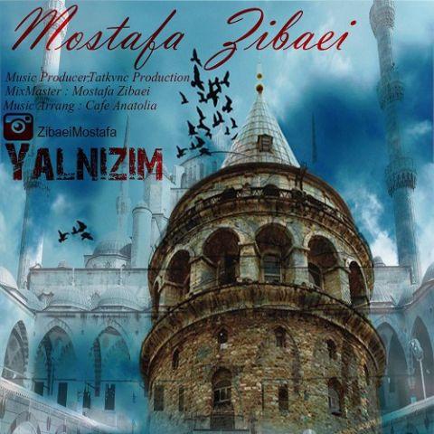 دانلود آهنگ مصطفی زیبایی به نام Yalnizim