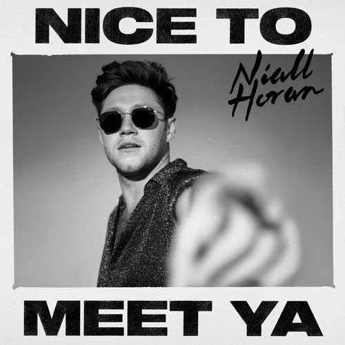 دانلود آهنگ Niall Horan به نام Nice To Meet Ya