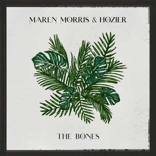 دانلود آهنگ Maren Morris And   Hozier به نام The Bones