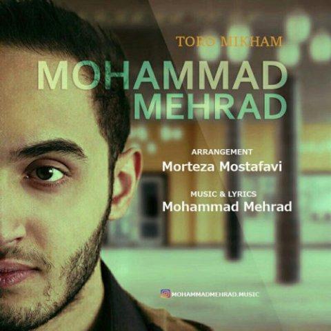 دانلود آهنگ محمد مهراد به نام تو رو میخوام