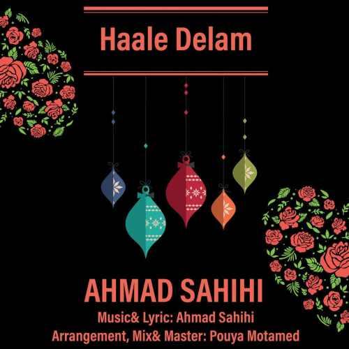 دانلود آهنگ احمد صحیحی به نام حال دلم از موزیک باز