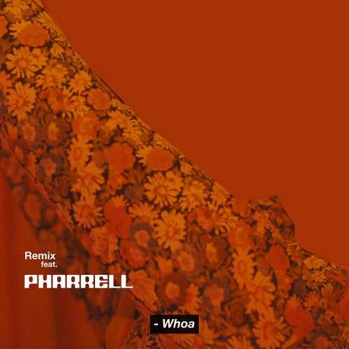 دانلود آهنگ Snoh Aalegra And Pharrell Williams به نام Whoa Remix