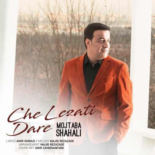 دانلود آهنگ مجتبی شاه علی به نام چه لذتی داره از موزیک باز