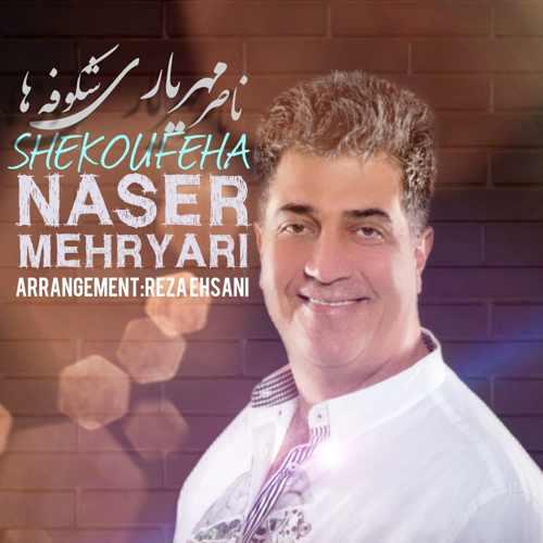 دانلود آهنگ ناصر مهریاری به نام شکوفه ها از موزیک باز