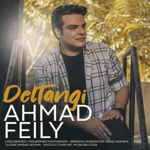 دانلود آهنگ احمد فیلی به نام دلتنگی از موزیک باز