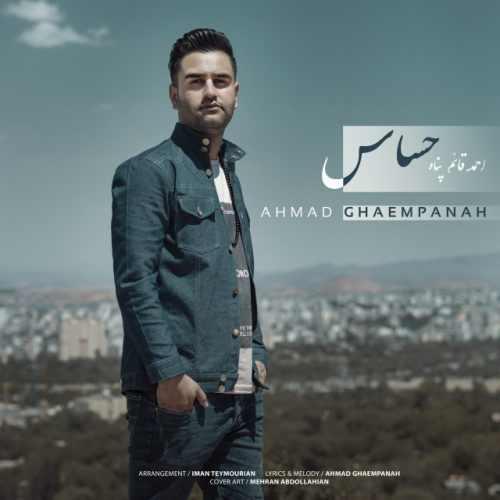 دانلود آهنگ احمد قائم پناه به نام حساس از موزیک باز