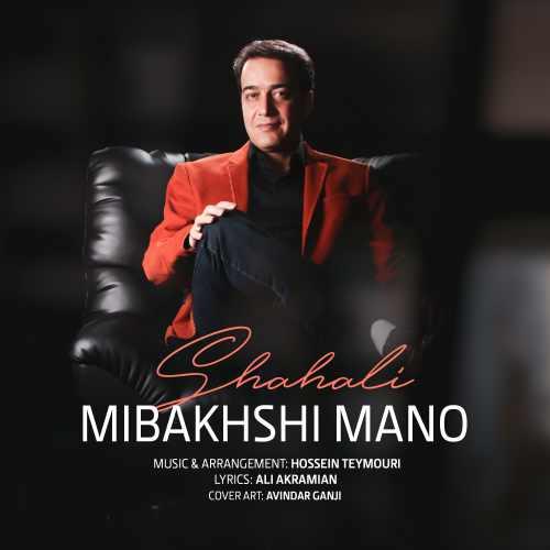 دانلود آهنگ مجتبی شاه علی به نام میبخشی منو از موزیک باز