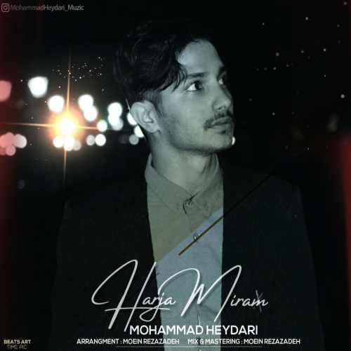 دانلود آهنگ محمد حیدری به نام هرجا میرم از موزیک باز