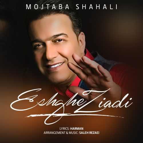 دانلود آهنگ مجتبی شاه علی به نام عشق زیادی از موزیک باز