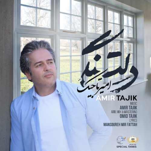 دانلود آهنگ امیر تاجیک به نام دلتنگی از موزیک باز