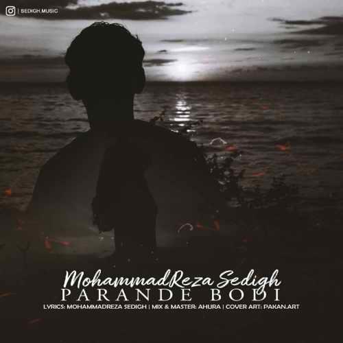 دانلود آهنگ محمدرضا صدیق به نام پرنده بودی از موزیک باز