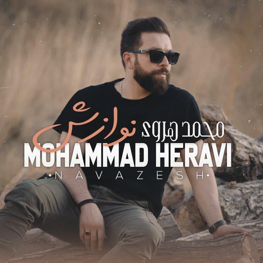 دانلود آهنگ محمد هروی به نام نوازش از موزیک باز