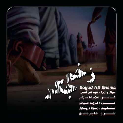 دانلود آهنگ سید علی شمس به نام زخم جگر از موزیک باز